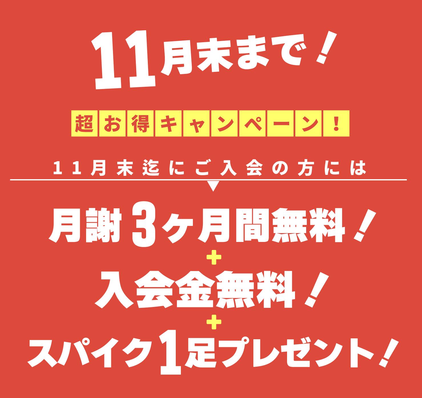 レガッテサッカースクール11月末まで超お得キャンペーン!!